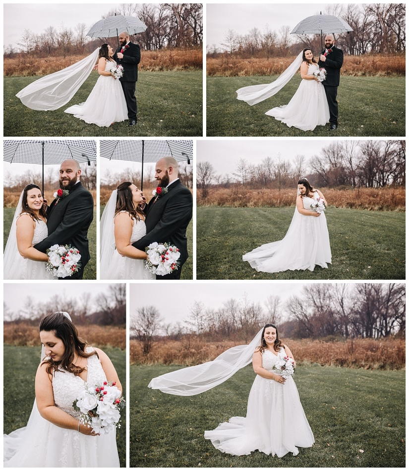 Lake Erie Bluffs - Northeast Ohio Wedding Photographer